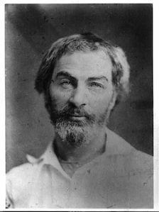 whitman1854
