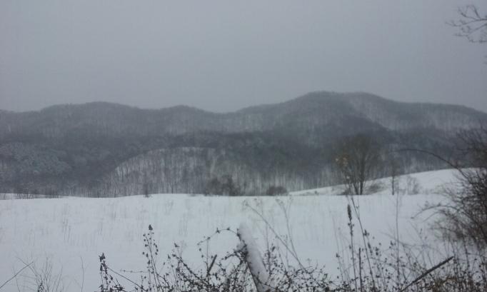 snowmeadow.jpg